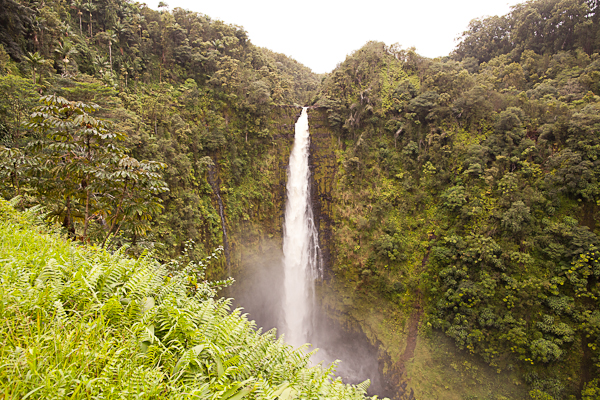 Asaka Falls in Hawaii