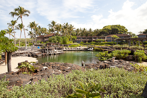 King's Pond at the Four Seasons Hualalai