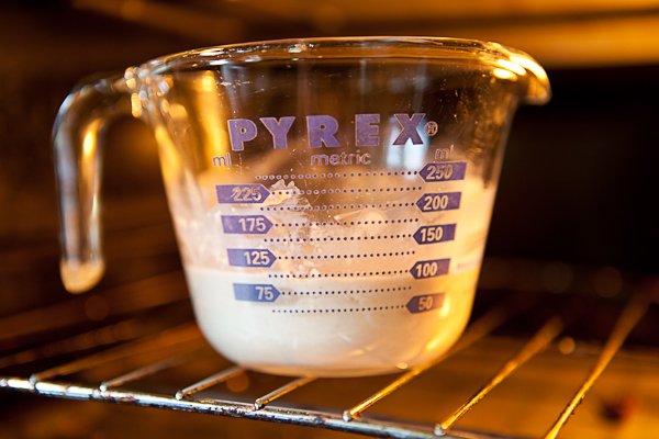 Preparing yeast mixture for pizza dough