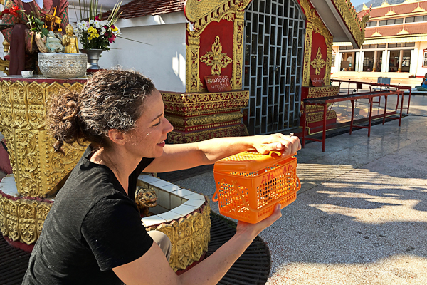 Making a wish at Shwedago Pagoda